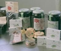 Nuevas algas gallegas comestibles, la osmundea y el codium