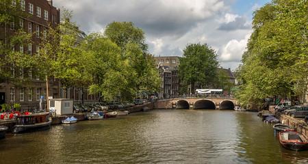 Holanda Renta Basica