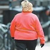 Microorganismos del sistema digestivo podrían ser causantes de la obesidad