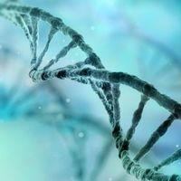 ¿Qué es el síndrome de Werner? Cuando envejeces demasiado rápido