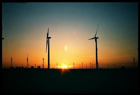 La triple hélice: innovación, estado y empresario