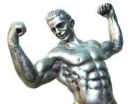 Cómo influye nuestra cantidad de fibra muscular en el desarrollo de los músculos