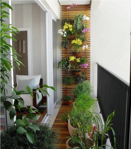Balcon Plantas 1