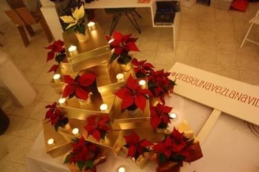 Hazlo tú mismo: cómo hacer un árbol de Navidad de Poinsettias en tres pasos