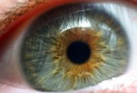 ¿Podría sustituir un escáner de iris a Touch ID? En Applesfera lo vemos poco probable
