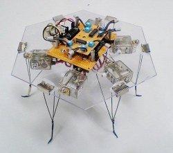 Robot controlado por hongos