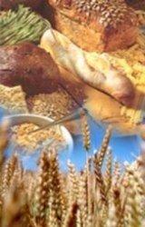 Cereales integrales contra la obesidad y la inflamación