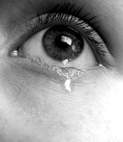 ¿Cuál es la función de llorar? Las lágrimas emocionales tienen una composición distinta a las lágrimas que lubrican el ojo