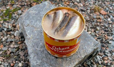 Surströmming, arenque fermentado