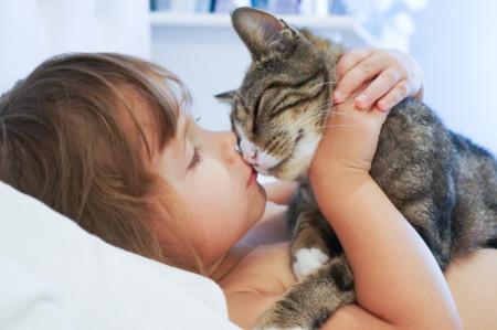 Los gatos ayudan a los niños con autismo a mejorar sus relaciones sociales