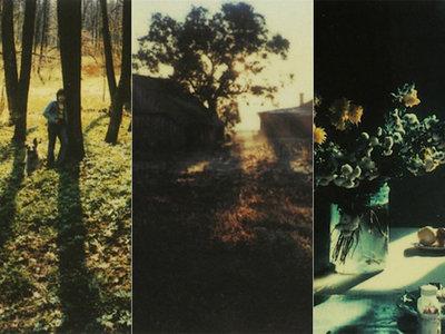 Las polaroid de Andrei Tarkovsky, un paseo por el Instagram más bonito que jamás existió