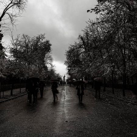Fotografía realizada con una cámara Phase One - Fernando Sánchez