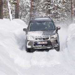 Foto 11 de 137 de la galería subaru-snow-drive-2016 en Motorpasión