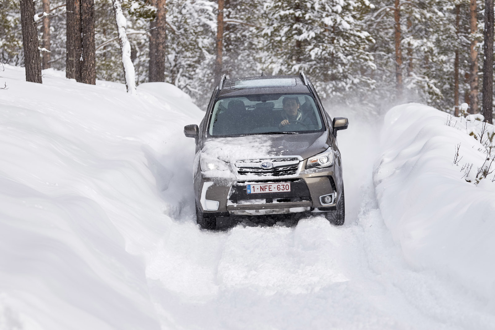 Foto de Subaru Snow Drive 2016 (11/137)
