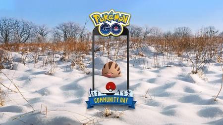 Swinub protagonizará el Día de la Comunidad de Pokémon GO en febrero con unos bonus muy especiales