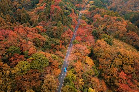 Las mejores rutas por España a través del otoño más japonés