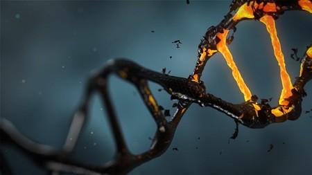 Primera prueba realizada en EEUU para combatir el cáncer usando la herramienta de edición CRISPR
