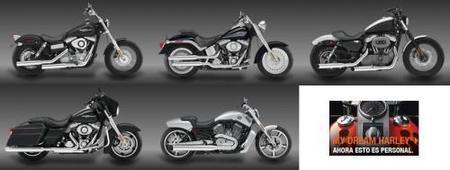 Buenas noticas, motos Harley más baratas
