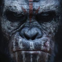 Foto 3 de 4 de la galería dawn-of-the-planet-of-the-apes-primeros-carteles en Espinof