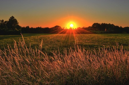 Brown And Green Grass Field During Sunset 1237119 2
