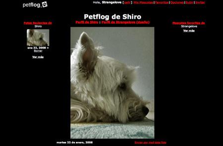 PetFlog: un fotoblog para mascotas