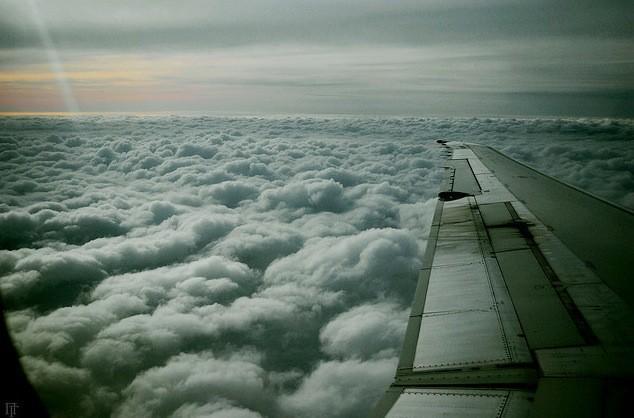 Volando Compañeros de ruta