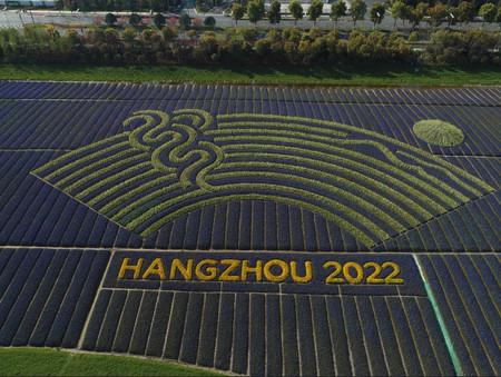 Los esports no formarán parte de los Juegos Asiáticos de Hangzhou 2022