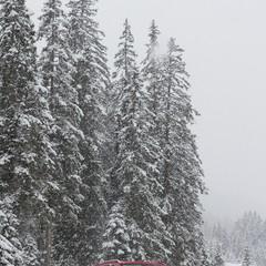 Foto 2 de 27 de la galería seat-snow-camp-2018 en Motorpasión