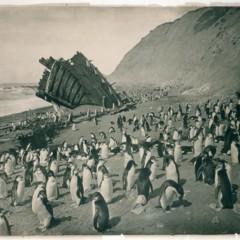 Foto 8 de 18 de la galería las-primeras-fotografias-de-la-antartida en Xataka Foto
