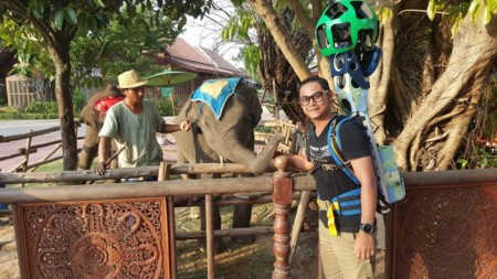 Elephants At Thai Thani Art Culture Village