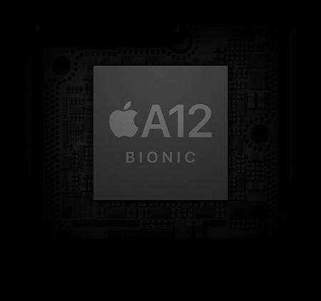 A12 Bionic Large 2x