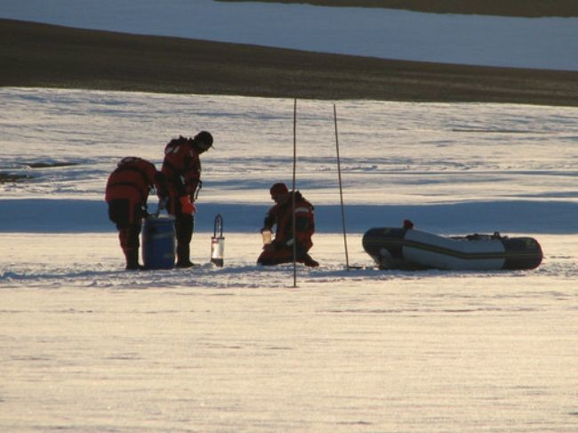 Descubren Por Primera Vez La Comunidad De Virus De La Antartida Image 380