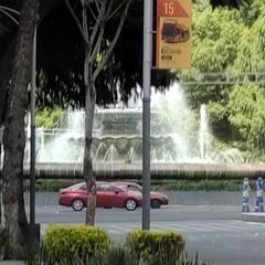 Foto 7 de 38 de la galería fotos-con-el-motorola-edge en Xataka México