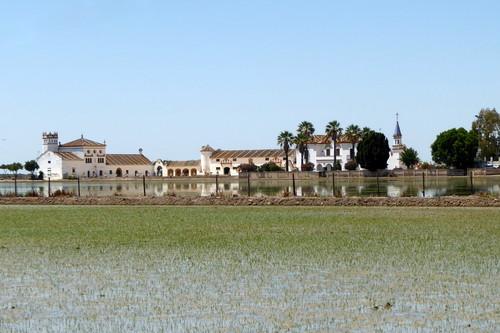 Paisaje y paisanaje en las marismas del Guadalquivir: Isla Mayor, Isla Menor e Isla Mínima