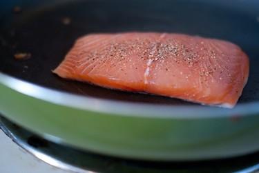 En busca de un salmón más barato. Solución, el salmón transgénico