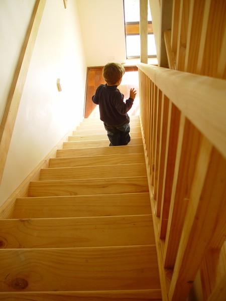 Stair Climb 3855 1280