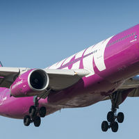 WOW Air quiebra  y deja a todos sus pasajeros en tierra