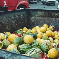 Reciclaje de comida: una tendencia creciente que ve en el desperdicio de alimentos una oportunidad