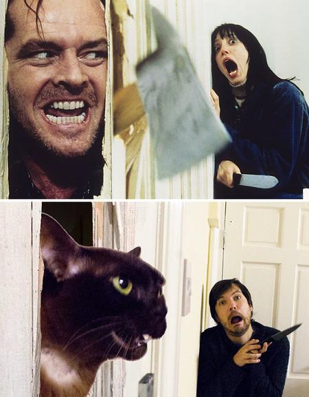 Movie Cats 1