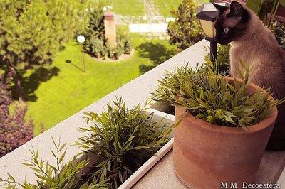 Una buena idea: utilizar plantas artificiales de exterior en lugares de difícil acceso