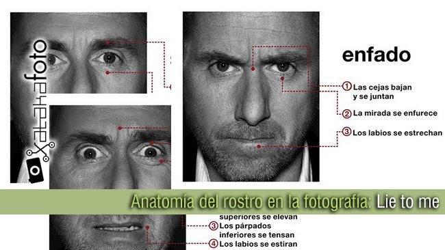 cabecera-anatomia_del_rostro.jpg