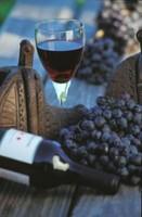 El vino y las leyes: lo que manda un sector