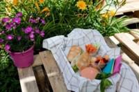 Lo mejor de la ciudad y del campo en el picnic urbano de la azotea de ABC Serrano