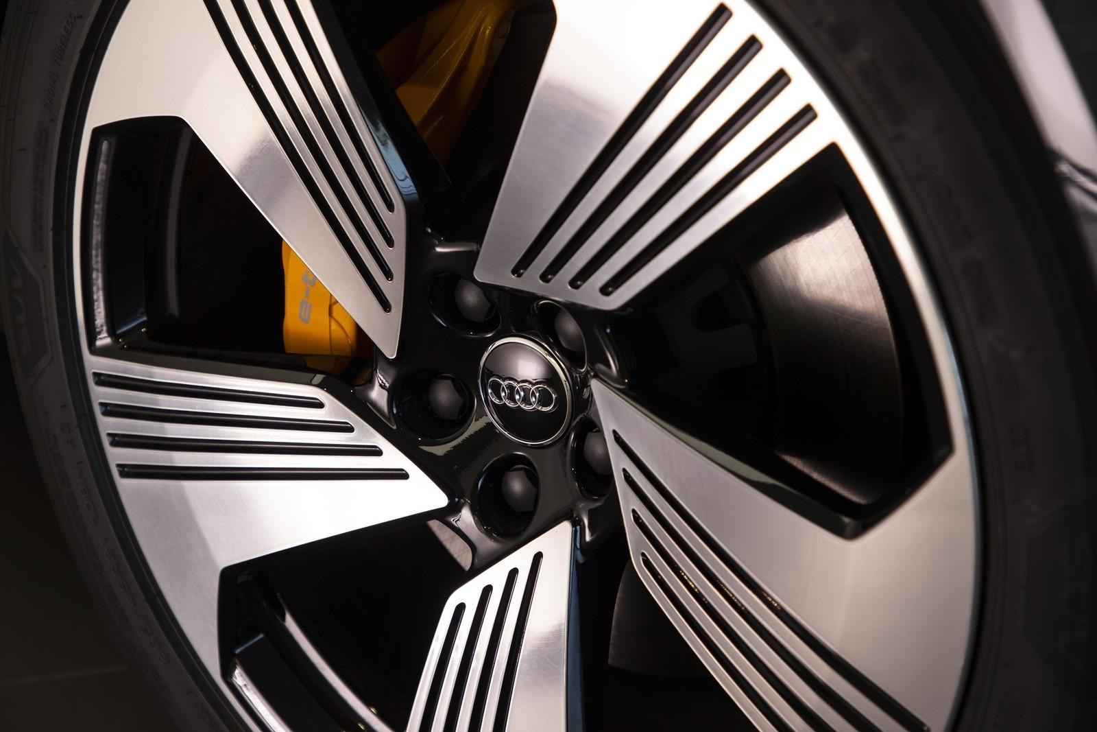 Foto de Audi e-tron (97/111)
