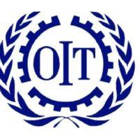 La OIT nos trae sus perspectivas sociales y de empleo en el mundo