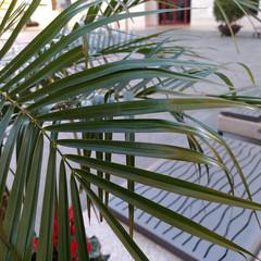 Foto 3 de 22 de la galería zte-axon-m-fotografias en Xataka