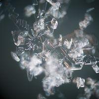 La halicina se convierte el primer antibiótico contra las superbacterias que se ha encontrado gracias a la inteligencia artificial