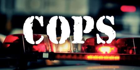'Cops' cancelada tras 32 temporadas: la docuserie policíaca dice adiós en medio de la polémica por la muerte de George Floyd