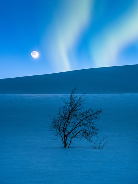 The Blue Hour C Tommy Eliassen Mini