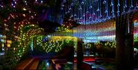 Greenhouse Club, una disco verde en Nueva York